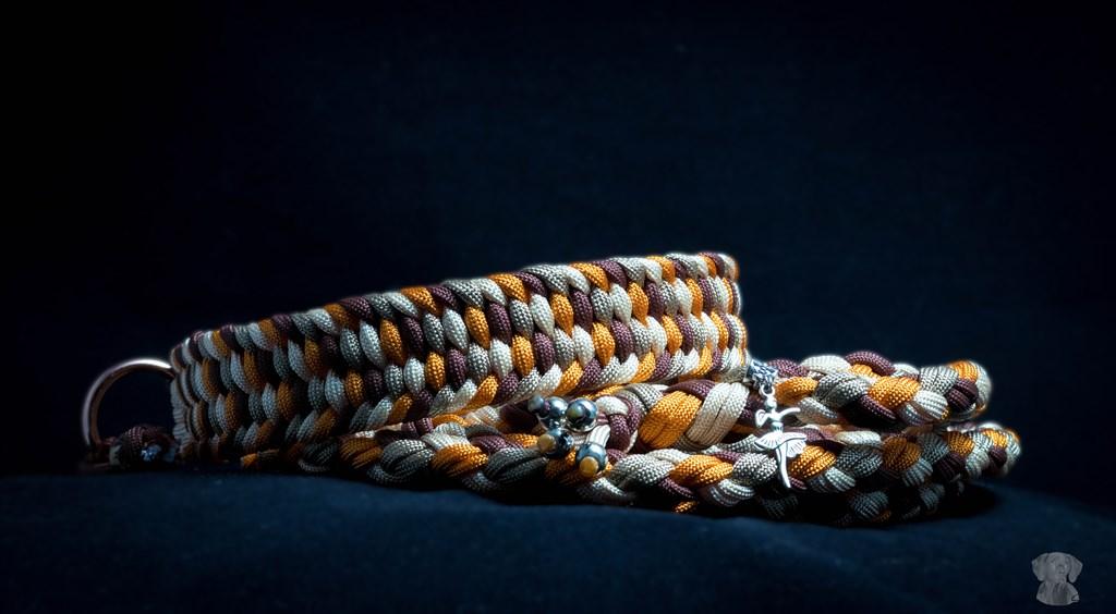 Halsband mit Leine
